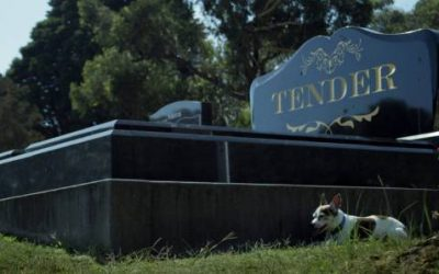 Building soon to start on home for Tender Funerals Mid North Coast